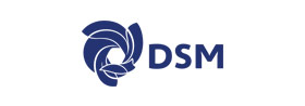 DSM FOOD SPECİALTİES